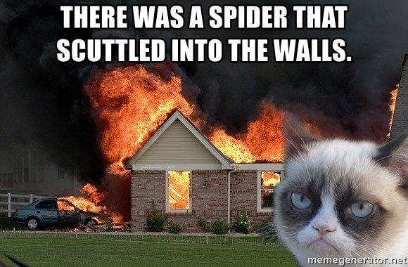 grumpy cat 8 - there was a spider that scuttled into the walls.
