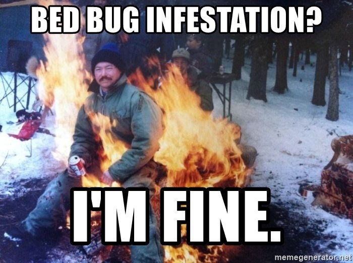 72166879 bed bug infestation? i'm fine fire meme generator