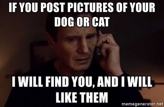 72233421 if you post pictures of your dog or cat i will find you, and i will