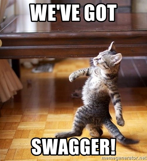 Swagger Cat - We've got swagger!