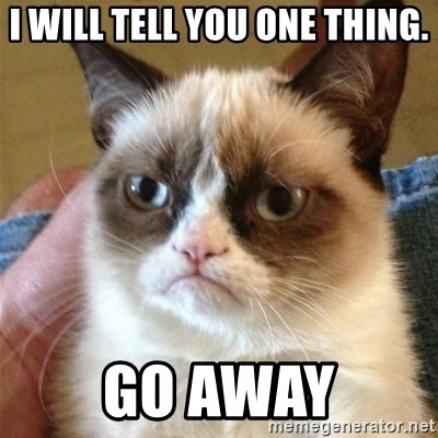 Grumpy Cat  - I will tell you one thing. Go away