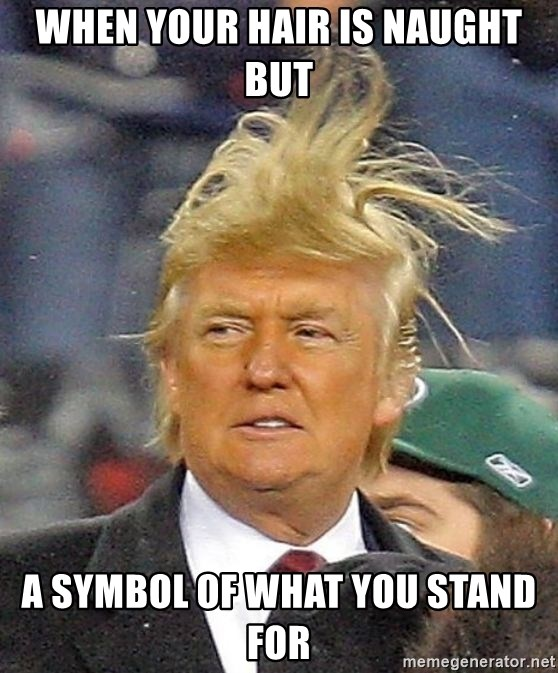 Donald Trump wild hair - When your hair is naught but a symbol of what you stand for