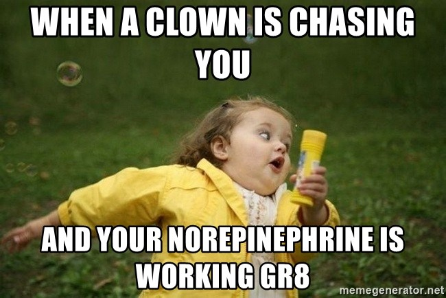 when a clown is chasing you and your norepinephrine is working gr8 ...