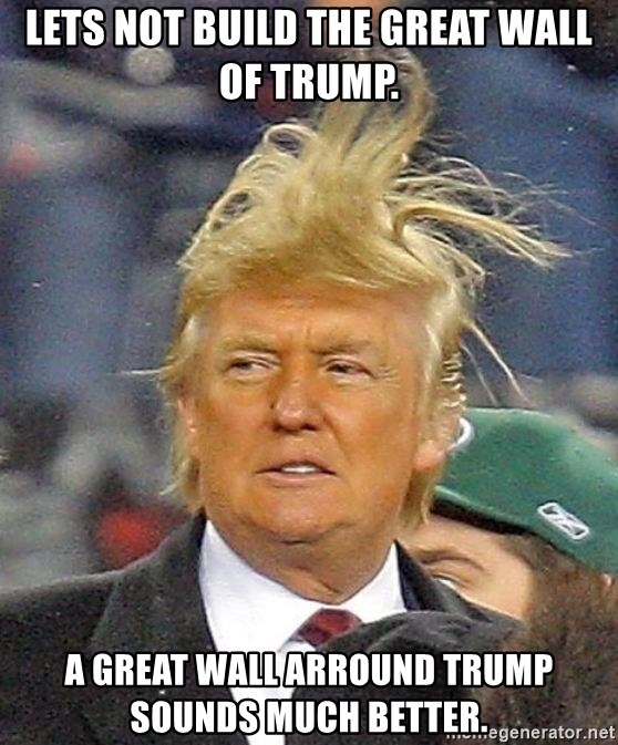 Donald Trump wild hair - Lets not build the great wall of trump. A great wall arround trump sounds much better.