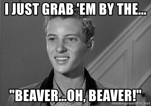 """Eddie Haskell - I JUST GRAB 'EM BY THE... """"Beaver...OH, Beaver!"""""""