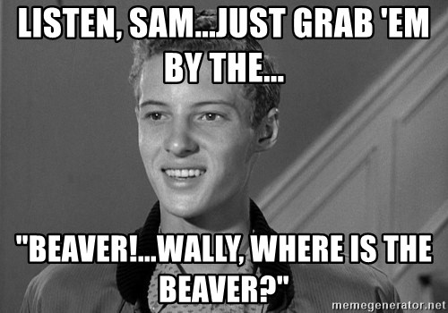 """Eddie Haskell - Listen, Sam...just grab 'em by the... """"BEAVER!...Wally, where is the Beaver?"""""""