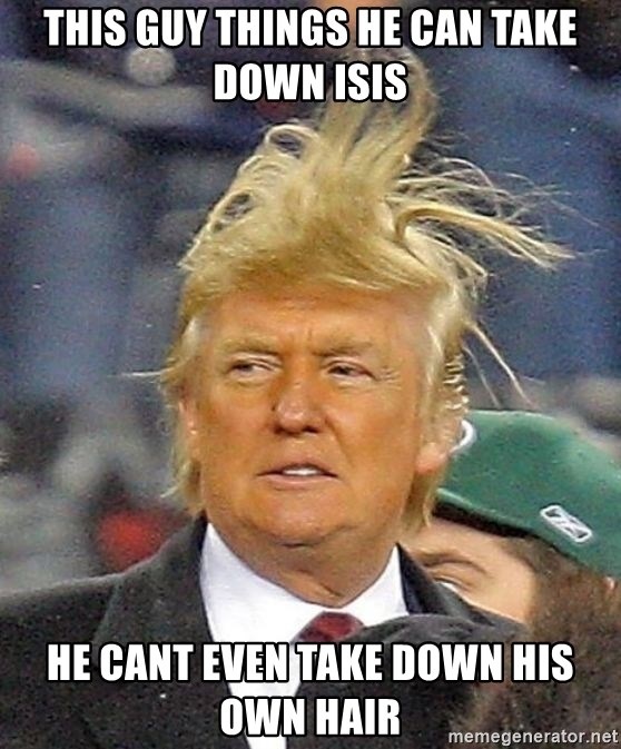 Donald Trump wild hair - This guy things he can take down isis he cant even take down his own hair