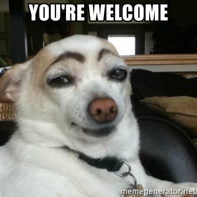 Eyebrows Dog - you're welcome