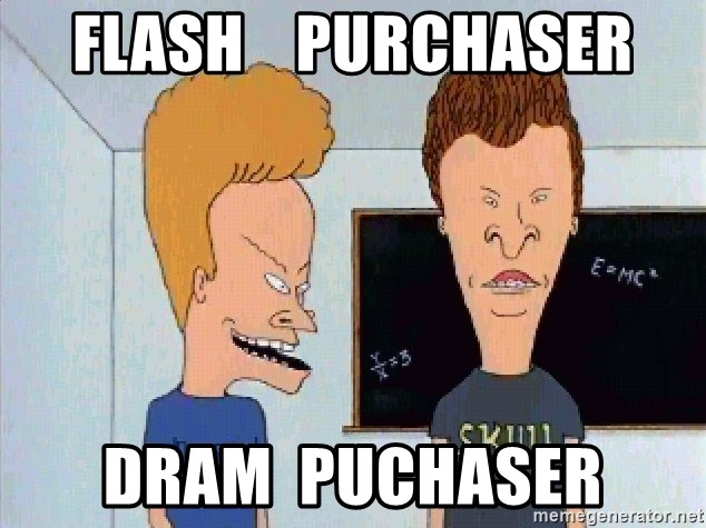 Beavis and butthead - flash    PUrchaser DRAM  puchaser