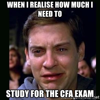 When I Realise How Much I Need To Study For The Cfa Exam Crying