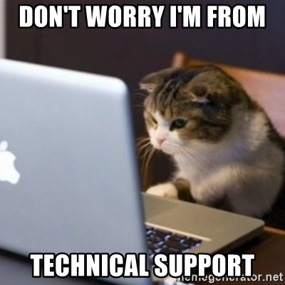 Image result for tech support cat