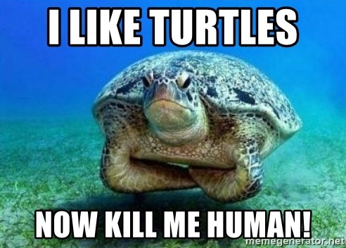 disappointed turtle - I LIKE TURTLES  NOW KILL ME HUMAN!