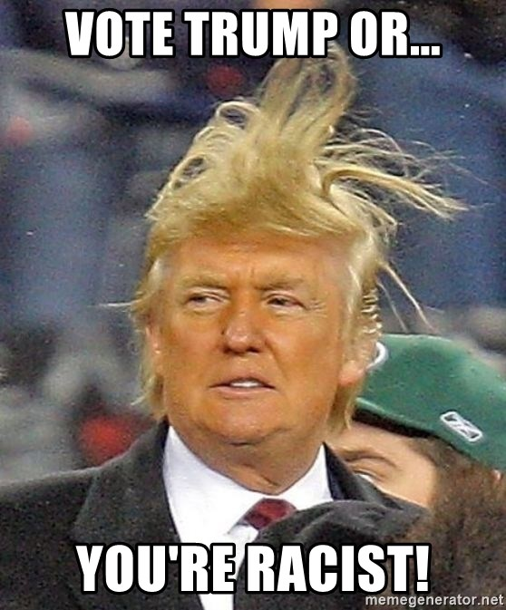 Donald Trump wild hair - Vote Trump or... You're racist!