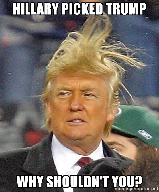Donald Trump wild hair - Hillary picked Trump Why shouldn't you?