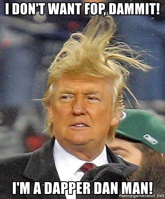 Donald Trump wild hair - I don't want fop, dammit! I'm a Dapper Dan man!