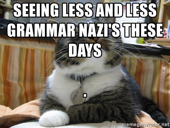 Seeing Less And Less Grammar Nazi S These Days Smug Cat Meme Generator
