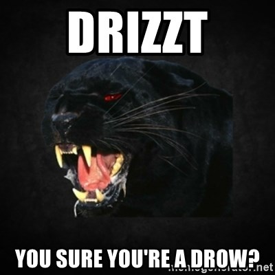 Roleplay Panther - drizzt you sure you're a drow?