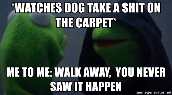 Evil kermit - *watches dog take a shit on the carpet* Me to me: walk away,  you never saw it happen