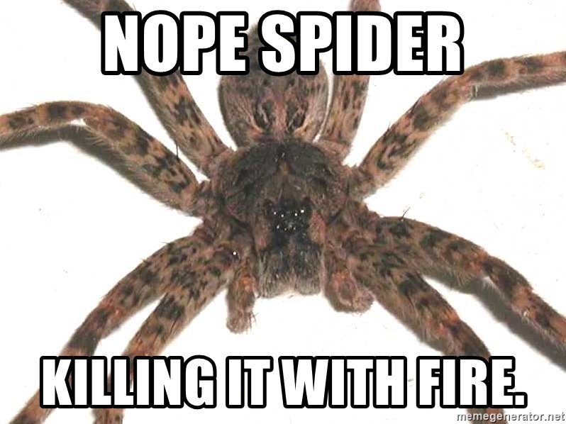 Nope Spider Killing It With Fire Spider Meme Generator