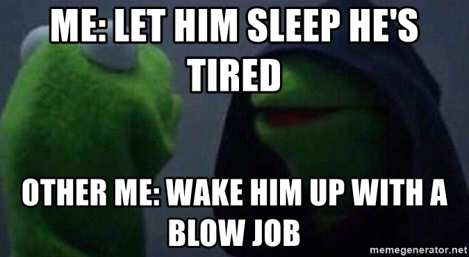 Evil kermit - Me: Let him sleep he's tired Other me: Wake him up with a blow job