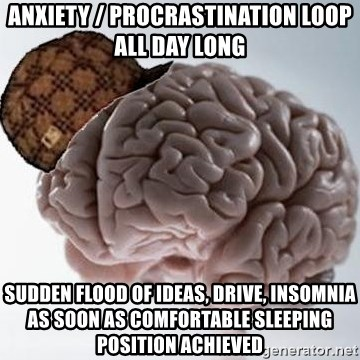 Scumbag Brain - anxiety / procrastination loop all day long sudden flood of ideas, drive, insomnia as soon as comfortable sleeping position achieved