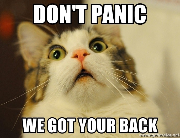 panic cat face - DON'T PANIC WE GOT YOUR BACK