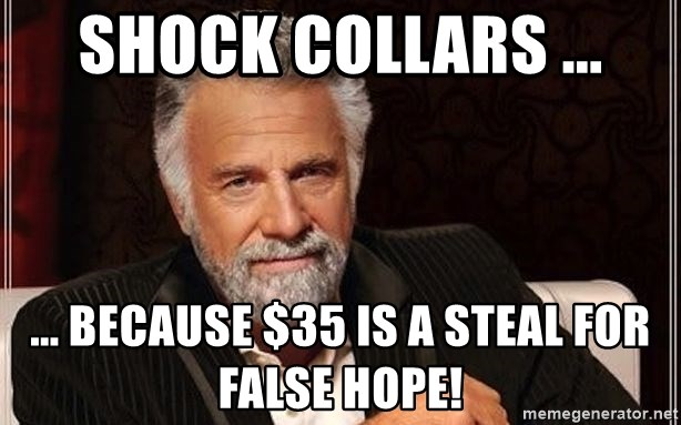 Shock Collars Because 35 Is A Steal For False Hope Most
