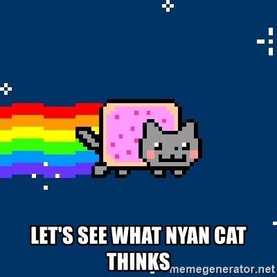 Nyancat -  Let's see what nyan cat thinks