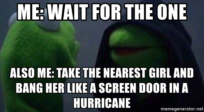 Evil kermit - me: wait for the one also me: take the nearest girl and bang her like a screen door in a hurricane