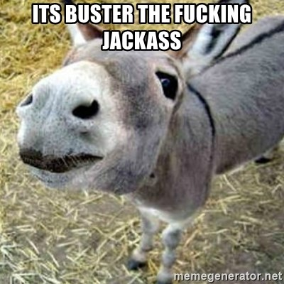 Assumptions Donkey - its buster the fucking jackass
