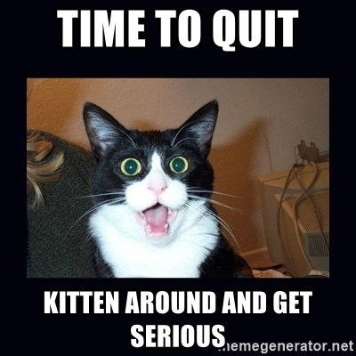Time To Quit Kitten Around And Get Serious Shocked Cat Meme Generator