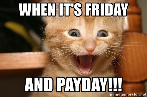 73784881 when it's friday and payday!!! happy cats meme generator