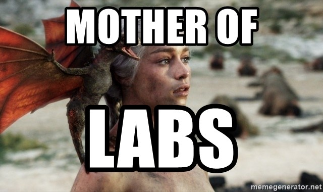 Mother of Dragons - Mother of Labs