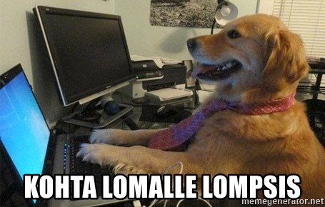 Kohta lomalle lompsis - I have no idea what I m doing - Dog with Tie ... 935d4a8774