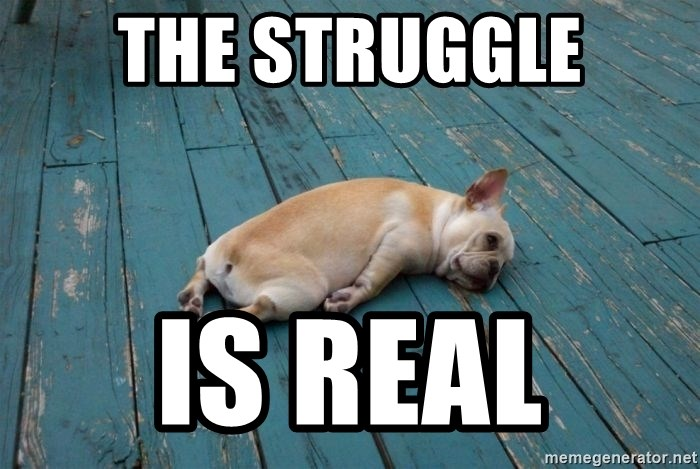 73959297 the struggle is real tired dog meme generator
