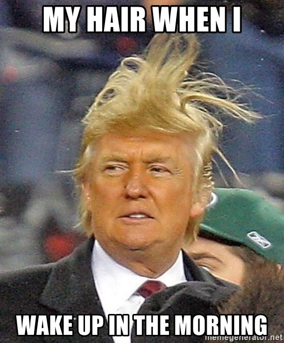 Donald Trump wild hair - my hair when i wake up in the morning