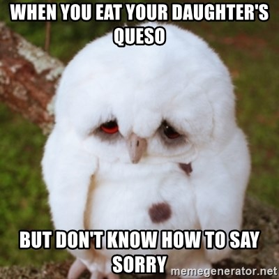 Sad Owl Baby - When you eat your daughter's queso But don't know how to say sorry