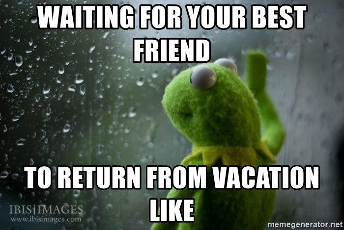 Waiting For Your Best Friend To Return From Vacation Like