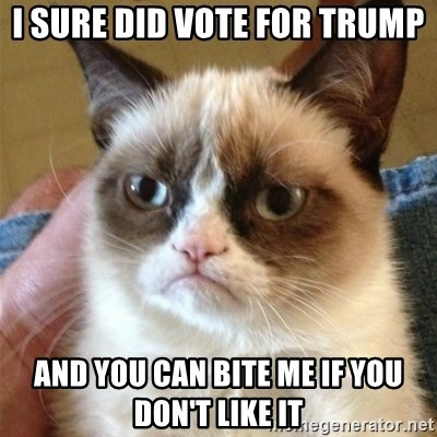 Grumpy Cat  - i sure did vote for trump and you can bite me if you don't like it