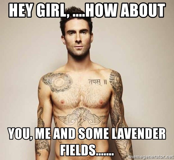 Adam Levine - Hey girl, ....How about You, Me and some Lavender Fields.......