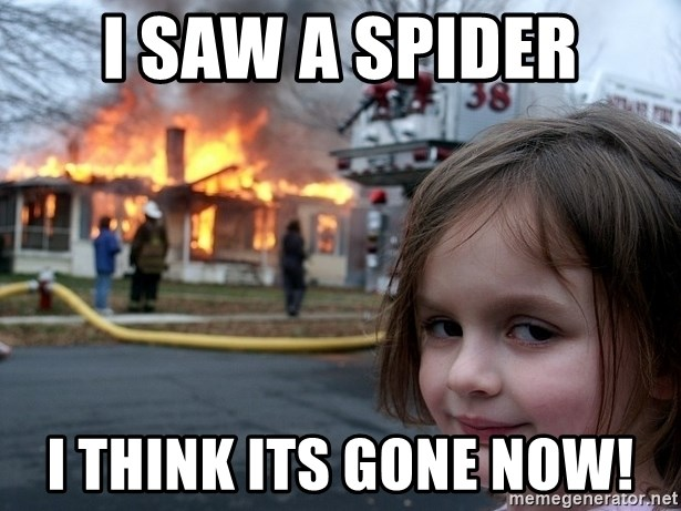Disaster Girl - I saw a spider I think its gone now!