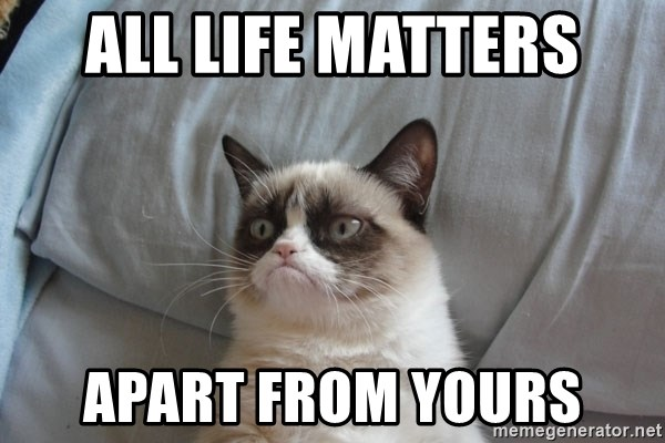 Grumpy cat good - All Life Matters Apart from yours