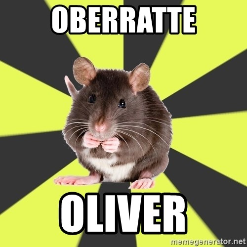 Survivor Rat - Oberratte Oliver