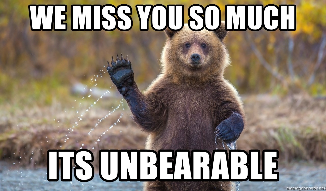 We Miss You So Much Its Unbearable Thank You Bear Y Much Meme