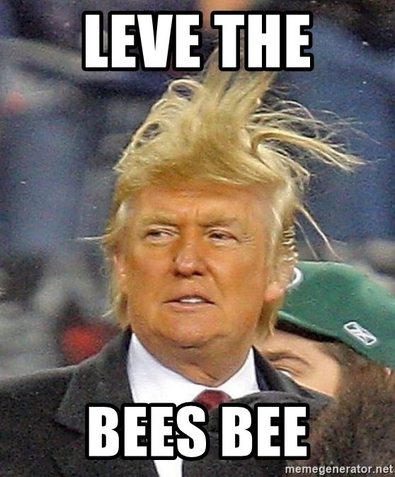 Donald Trump wild hair - LEVE THE  BEES BEE