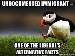 Unpopular Opinion - undocumented immigrant = one of the liberal's alternative facts