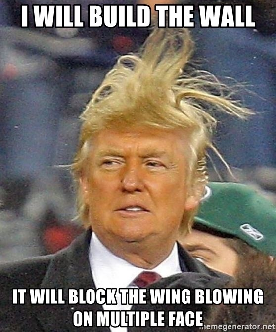 Donald Trump wild hair - I will build the wall It will block the wing blowing on multiple face