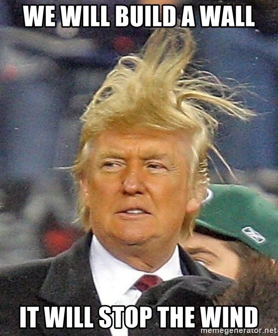 Donald Trump wild hair - We will build a wall It will stop the wind