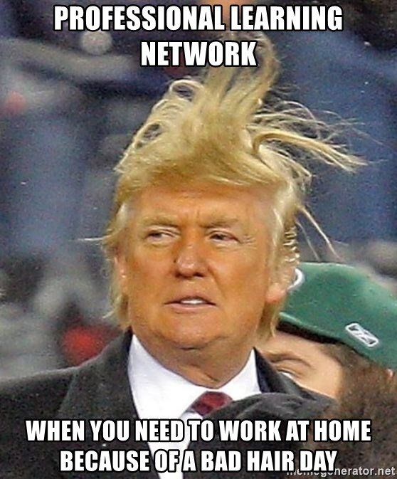 Donald Trump wild hair - PRofEssional learning network WheN you need to work at home because oF a bad hair day