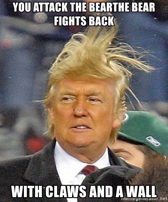 Donald Trump wild hair - You attack the bearTHE BEAR FIGHTS BACK With claws and a wall
